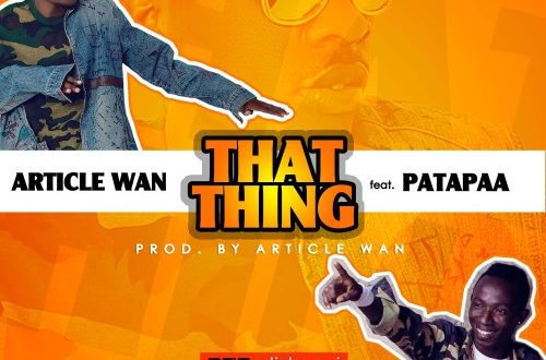 Article Wan ft Patapaa – That Thing