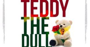 Shatta Wale – Teddy The Doll (Prod. By M.O.G Beatz)